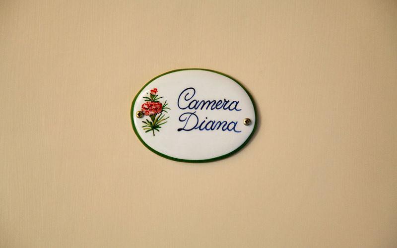 Camera Diana 5