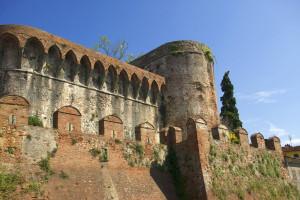 Strada del Vino e dell'Olio di Lucca, Montecarlo e Versilia